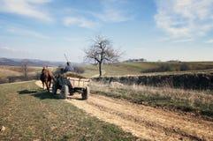 Pferd mit einem Warenkorb Lizenzfreie Stockfotos