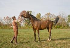 Pferd mit Kursleiter stockfotografie