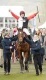 Pferd Racing Stockfotos