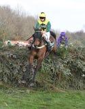 Pferd Racing Lizenzfreie Stockfotos