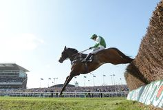Pferd Racing Lizenzfreie Stockbilder