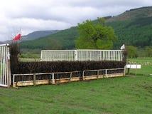 Pferd springen Lizenzfreie Stockbilder