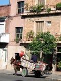 Pferd und Buggy Lizenzfreie Stockbilder