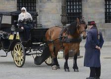 Pferd und Buggy in Amsterdam, die Niederlande Stockfotos