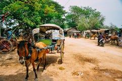 Pferd und bunter Buggy in Bagan stockbild