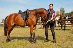 Pferd und Equestrienne Stockbilder