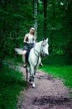 Pferd und Frau Lizenzfreies Stockfoto