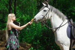 Pferd und Frau Lizenzfreie Stockbilder