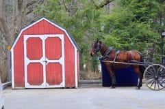 Pferd und Halle Stockbilder