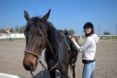 Pferd und Mitfahrer Stockfoto