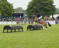 Pferd und Reiter über Hindernis lizenzfreies stockbild