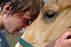 Pferd und Reiter Stockfoto