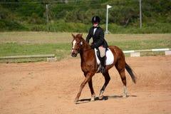 Pferd und Reiter in der Dressurreitenarena Stockfotografie