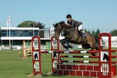Pferd und Reiter in der perfekten Harmonie lizenzfreie stockbilder