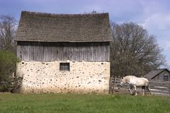 Pferd und rustikaler Stall Stockfotografie