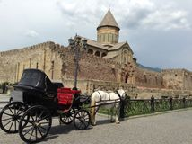 Pferd und Schloss Stockbilder