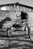 Pferd und Wagen   Lizenzfreie Stockbilder