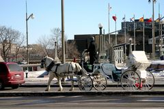 Pferd und Wagen Stockfoto