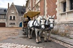Pferd und Wagen an der richtigen Stelle du Chateau Square, Blois Lizenzfreie Stockbilder