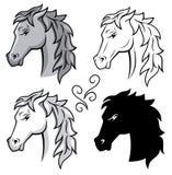 Pferde. Stockfotografie