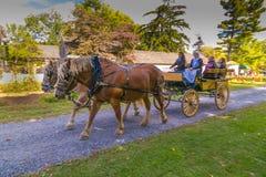 Pferde, die einen Lastwagen an Landis-Tal ziehen Stockfoto