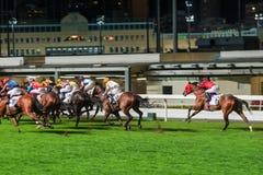 Pferde geritten von den Jockeys, die schnell während des Rennens laufen Bemühung zum Sieg Bewegung geverwischt, getontes horizont lizenzfreie stockfotos