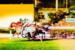 Pferde geritten von den Jockeys, die schnell während des Rennens laufen Bemühung zum Sieg Bewegung geverwischt, getontes horizont lizenzfreies stockfoto