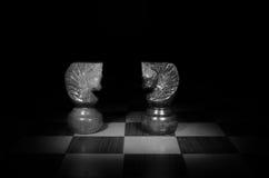 Pferde im Schachspiel stockbilder