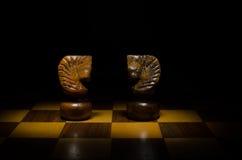 Pferde im Schachspiel Stockfoto