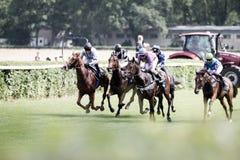 Pferde und Jockeys an einem Pferderennen Stockbilder