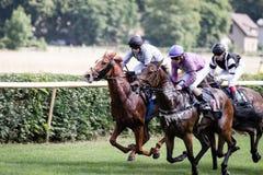 Pferde und Jockeys an einem Pferderennen Stockbild
