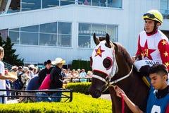Pferde- und Mannesjockey, der zum Rennen bei Emerald Downs fertig wird Lizenzfreie Stockfotografie