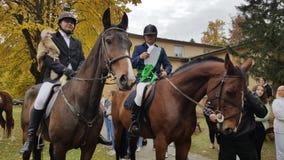 Pferde und Reiter auf Kosice-Universität auf Slowakei lizenzfreie stockfotos