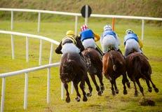Pferde, welche die Bahn laufen Lizenzfreies Stockfoto