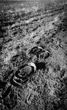 Pferdeabdrücke gesehen im weichen Schlamm nahe einem Bauernhoffeld lizenzfreie stockfotografie