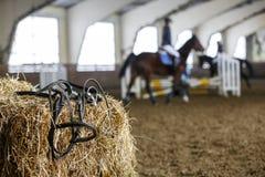 Pferdeausrüstung und -Dressurreiten Stockfotos