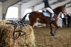Pferdeausrüstung und -Dressurreiten Lizenzfreie Stockfotos