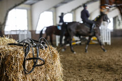 Pferdeausrüstung und -Dressurreiten Stockbilder