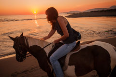 Pferdefahrt bei Sonnenuntergang Lizenzfreies Stockfoto