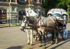 Pferdegespann, St Petersburg, Russland Lizenzfreies Stockfoto