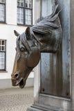 Pferdekopf an einem Brunnen Stockfoto