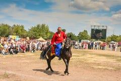 Pferdekrieger stockfotografie