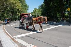 Pferdekutsche, NYC Stockbilder
