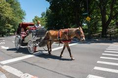 Pferdekutsche, NYC Stockfoto