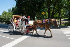 Pferdekutsche, NYC Lizenzfreie Stockfotografie