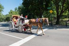 Pferdekutsche, NYC Lizenzfreies Stockfoto