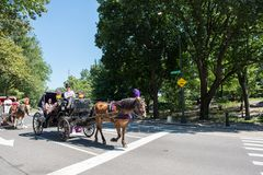 Pferdekutsche, NYC Lizenzfreie Stockfotos