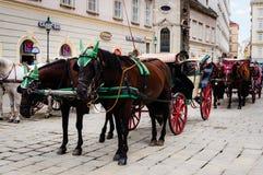 Pferdekutschetradition, Wien Österreich Lizenzfreie Stockbilder