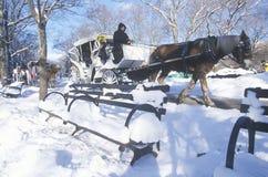 Pferdekutschfahrt im Central Park, Manhattan, New York City, NY nach Winterschneesturm Stockfoto