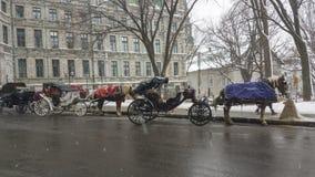 Pferdekutschfahrt in Quebec, Kanada Stockbild